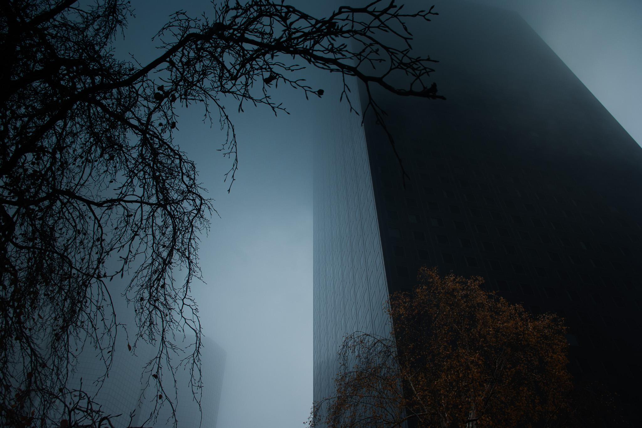 Brouillard