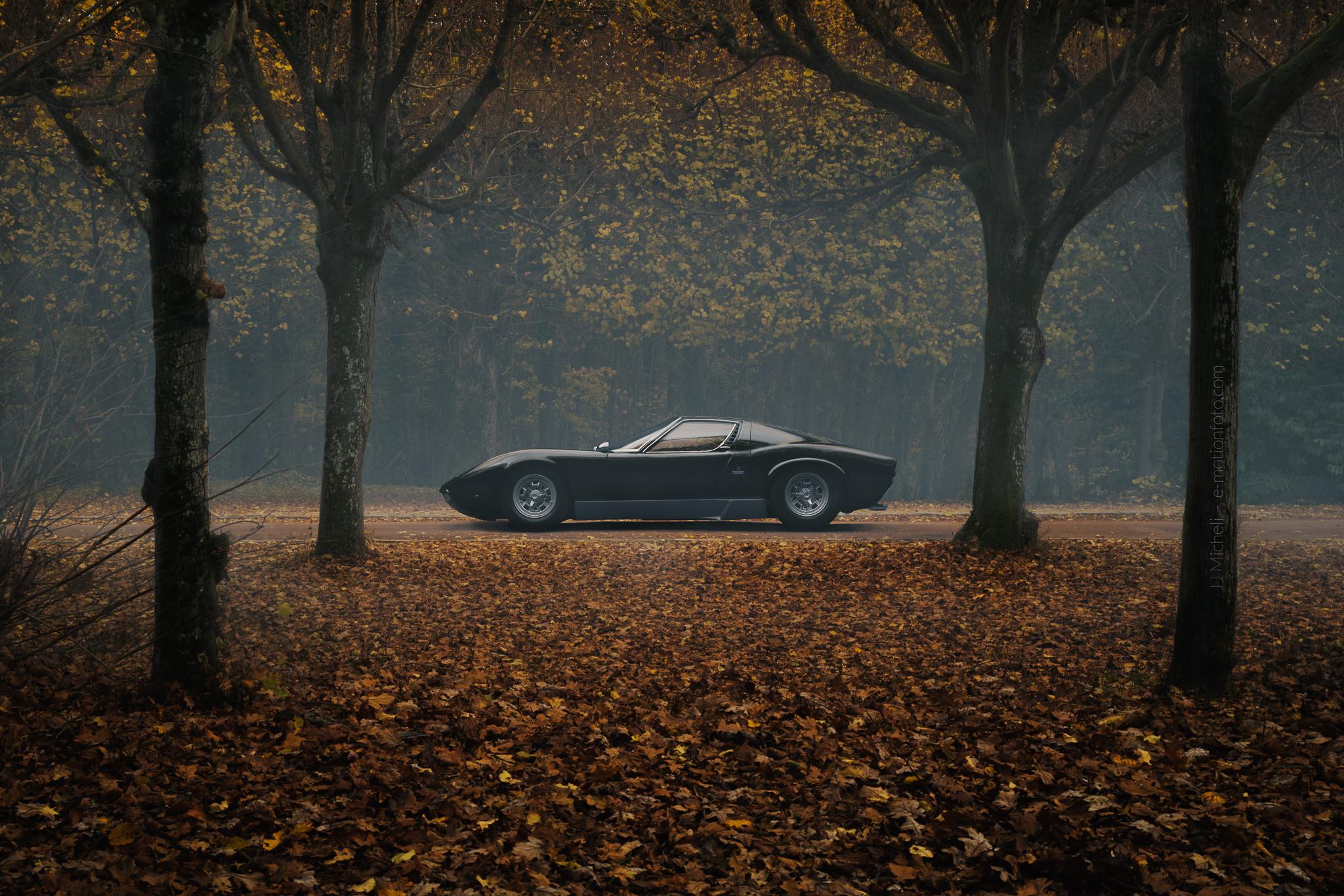 Lamborghini Miura SV - automne